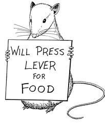 will-press-lever-for-food1